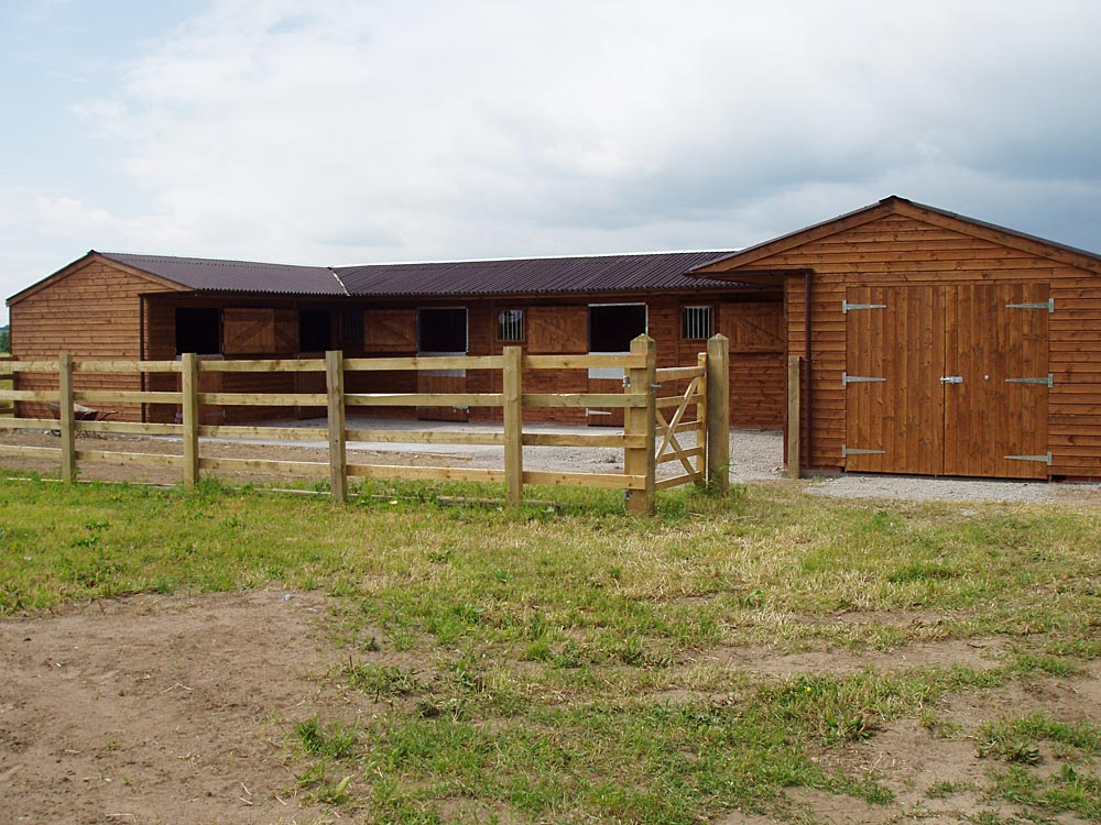 Traditional Stables Levade Systems