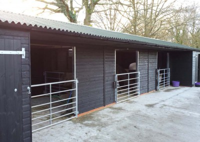 Something a little different but remarkably practical. Green Onduline over a ply decked roof, black finish compliments the galvanised gates. Internal gates open through 90 degrees and fold back, safely, against the rear wall.  Galvanised capping protects the edges of the openings from unfriendly teeth!