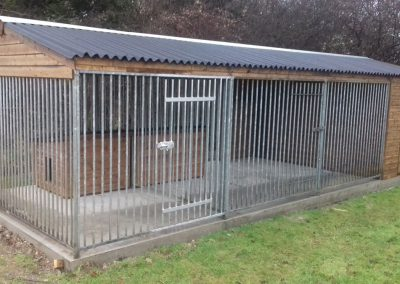 Good size dog run with two individual kennels and a feed store at one end.