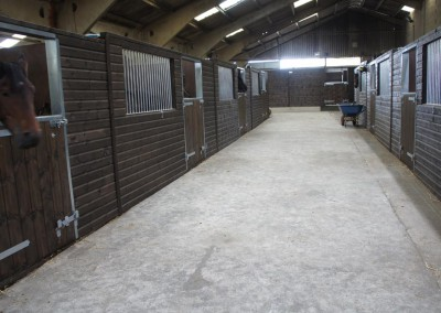 Internal stabling at Treetops Stud - 10 large foaling boxes within a barn.