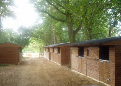 A number of wooden mobile stable units along a woodland track in sunny Dorset, on wooden skids.